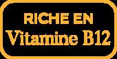 riche-en-vitamine-B12