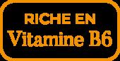riche-en-vitamine-B6